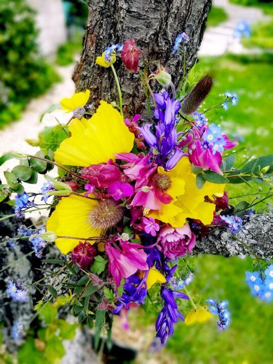 recevoir-fleur-tous-les-mois